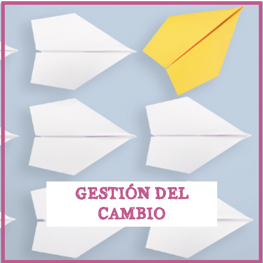GESTION DEL CAMBIO IMM INSTITUTO