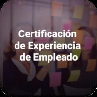 Experiencia (1)