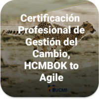 HCMBOK TO AGILE (1)